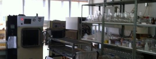 Laboratório de Micropropagação Vegetal is one of UFPR - Centro Politécnico.
