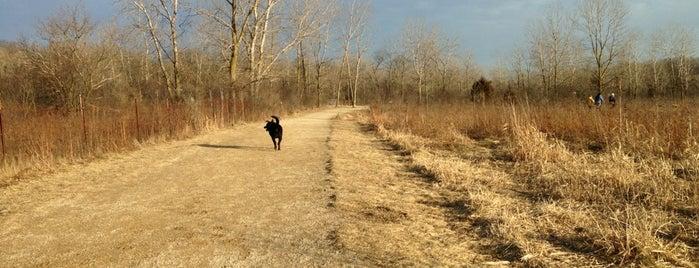 Prairie Wolf Dog Exercise Area is one of สถานที่ที่ Ed ถูกใจ.