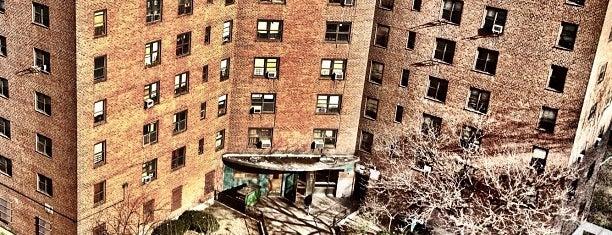 NYCHA - Smith Houses is one of Jeree'nin Kaydettiği Mekanlar.