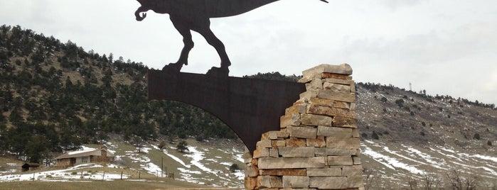 Dinosaur Ridge is one of สถานที่ที่ Hampton Inn Denver-International Airport ถูกใจ.