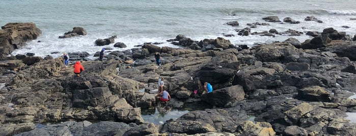 Rock Pool is one of South West UK.
