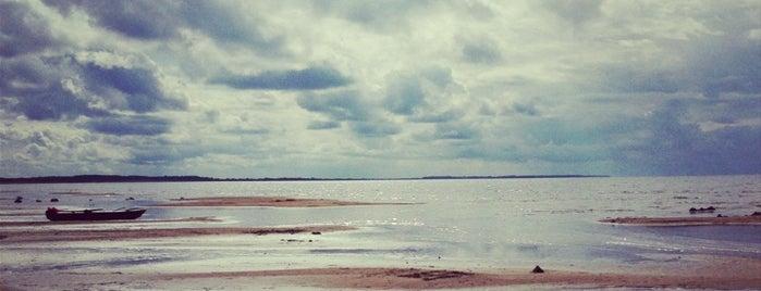 Берег Чудского озера is one of สถานที่ที่ Катеринга ถูกใจ.