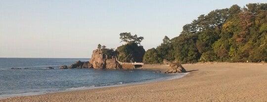 桂浜 is one of Shigeoさんの保存済みスポット.