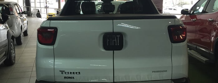 Roma Fiat is one of Rio Serviços.