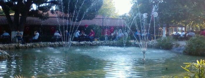 Atatürkçü Düşünce Derneği Parkı is one of Şirince My Home ....