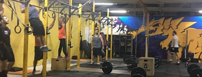 CrossFit Cordylus is one of Favorites.
