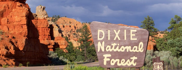 Dixie National Forest is one of National Recreation Areas.