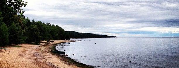 Мыс Флотский is one of Tempat yang Disukai Тимур.
