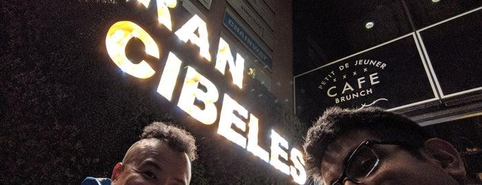 Gran Cibeles Cafe is one of Locais curtidos por Ye.