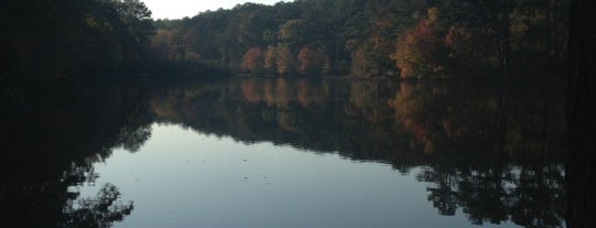 Panola Mountain State Park is one of All-time favorites in United States.