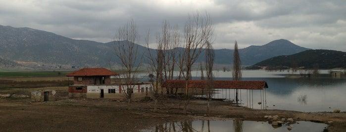 Çeltikçi is one of Yasemin Arzu: сохраненные места.