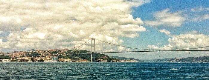 Paşalimanı Kafe is one of SÜRÜCÜ KURSU http://www.ozsagyildirim.com/.