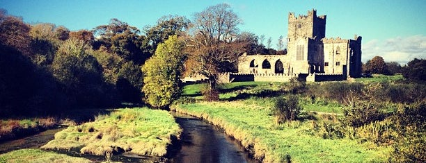 Tintern Abbey is one of In Dublin's Fair City (& Beyond).