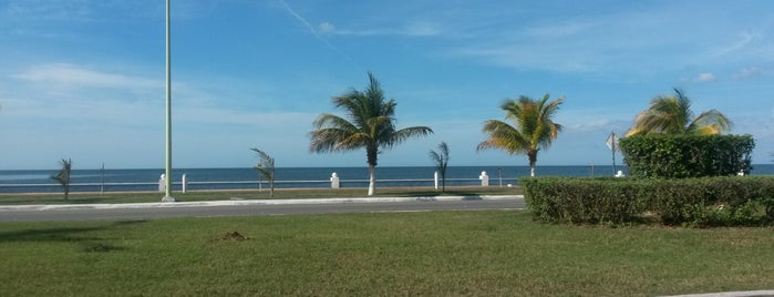 Campeche is one of Por Hacer.