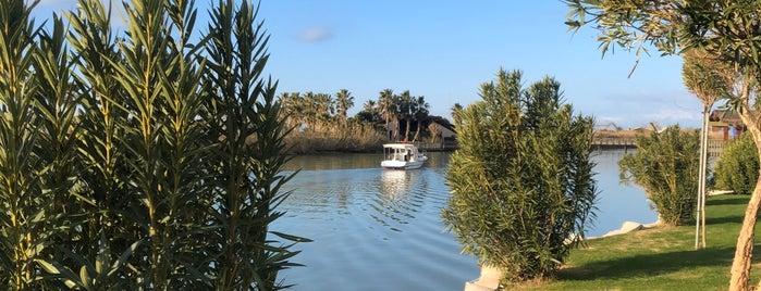 Gloria Serenity Resort is one of Orte, die Fatos gefallen.