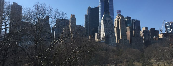 Wollman Rink is one of The New Yorkers: Extracurriculars.