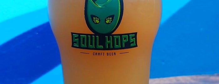 Soul Hops Cervejas Artesanais Berrini is one of Craft beer in São Paulo.