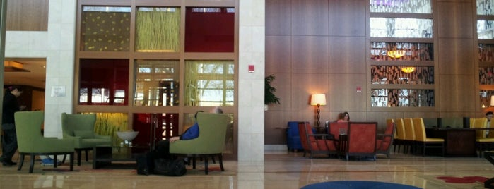 Atlanta Marriott Buckhead Hotel & Conference Center is one of Hotels that I stay in.