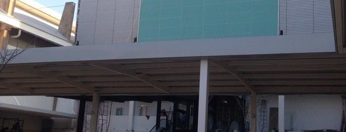 Sears Nuevo Veracruz is one of Veracruz.