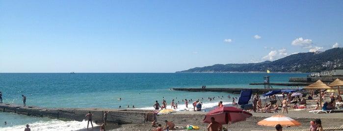 Пляж «Альбатрос» is one of Locais curtidos por Svet.