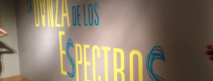 Museo de Arte Moderno is one of Spots Vol.1 - CDMX.
