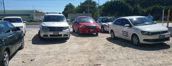 Los Tacos del Sapo is one of Lugares guardados de Yes car rental.