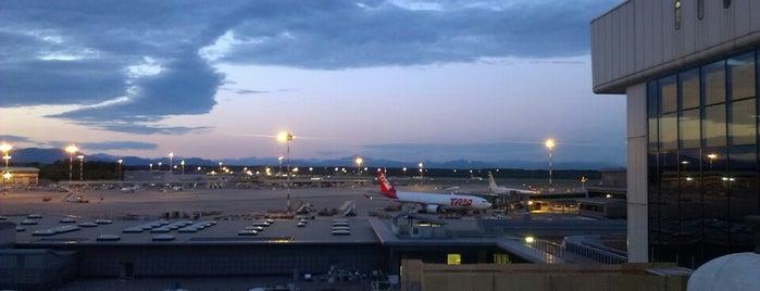 Aeroporto di Milano Malpensa (MXP) is one of Skyfall.