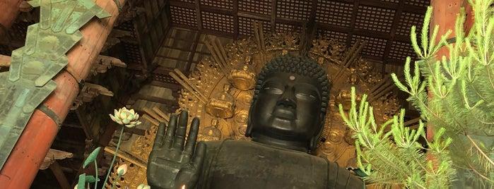 Vairocana Buddha (Nara no Daibutsu) is one of Orte, die Thiago gefallen.