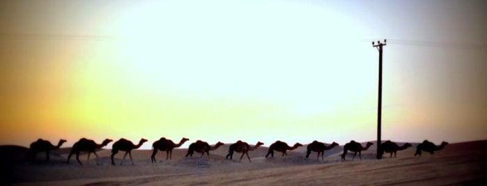 Al Khatim Desert is one of Locais curtidos por Aylin.