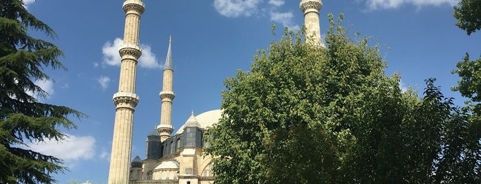 Selimiye Camii is one of Aylinさんのお気に入りスポット.