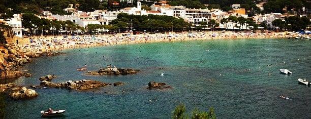 Platja de Llafranc is one of Playas de España: Cataluña.