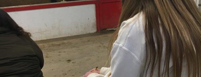 Jefferson County Fairgrounds is one of Posti che sono piaciuti a Jill.