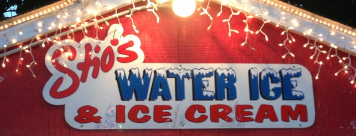 Stio's Water Ice is one of Philly Foodies Unite.