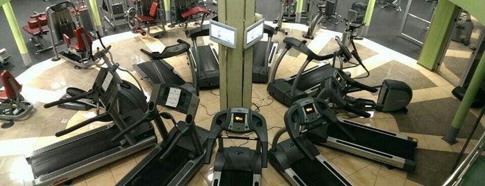 Колизей Fitness Club is one of Oleksandra'nın Beğendiği Mekanlar.