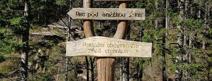 Bouda Pod Sněžkou is one of Riesengebirge.