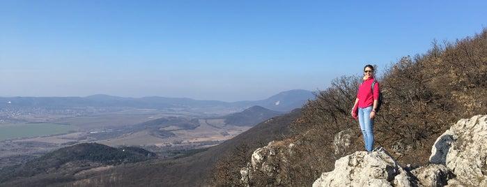 Nagy-Kevély is one of Budai hegység/Pilis.