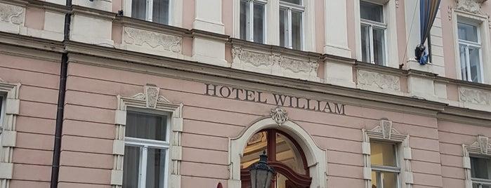 Hotel William is one of สถานที่ที่ Oleg ถูกใจ.