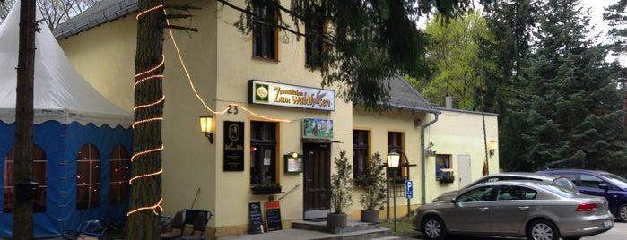 Zum Gemütlichen Waldhasen is one of Brandenburg Blog.
