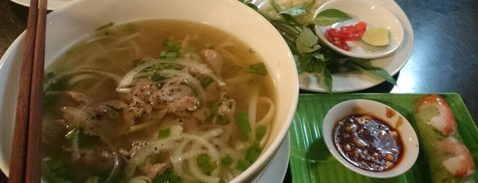 Viet Pho is one of Project #2 singa.