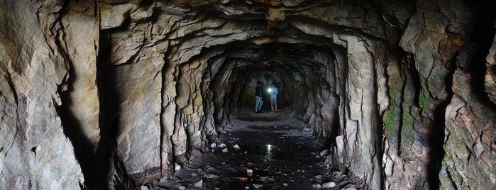 Kamikaze Grottos is one of Locais curtidos por Meri.