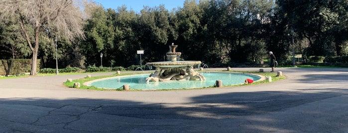 Fontana dei Cavalli Marini is one of Kawika : понравившиеся места.