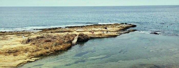 Sliema Beach is one of Posti che sono piaciuti a 😎 Mariann.