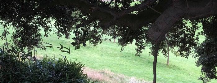 Perrett's Park is one of Brisrol.