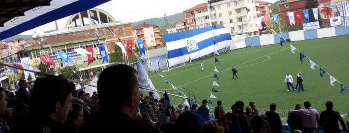 Tuzla Belediyesi Stadı is one of Gespeicherte Orte von Burak.