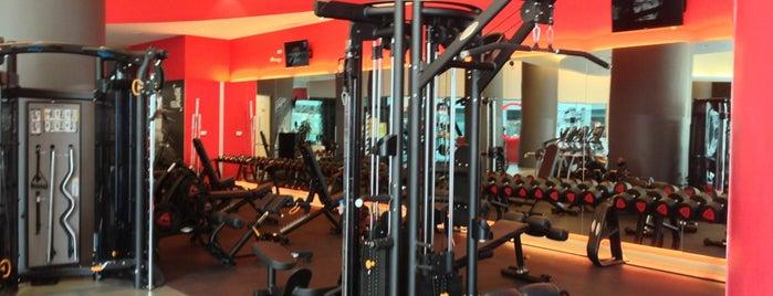 Jatomi Fitness is one of Posti che sono piaciuti a ' BiRoL.