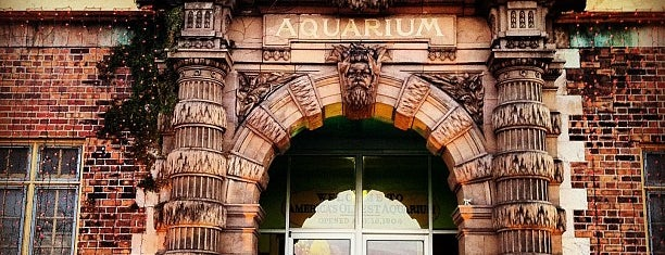 Belle Isle Aquarium is one of Detroit.