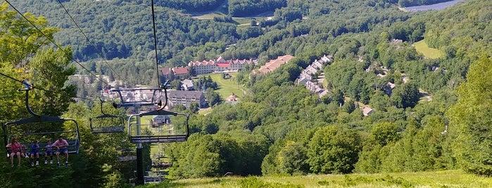 Jimimy Peak Adventure Park is one of Laura : понравившиеся места.