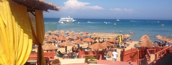 Ammos Beach Club is one of Zakynthos.