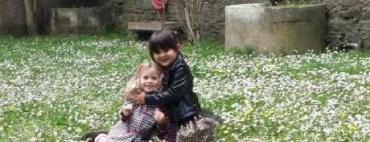 L'eglise Sacre Coeur is one of istanbul avrupa git2.