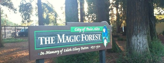 The Magic Forest is one of FAVORITE.